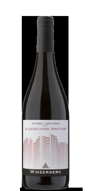 Blauburgunder Pinot Nero